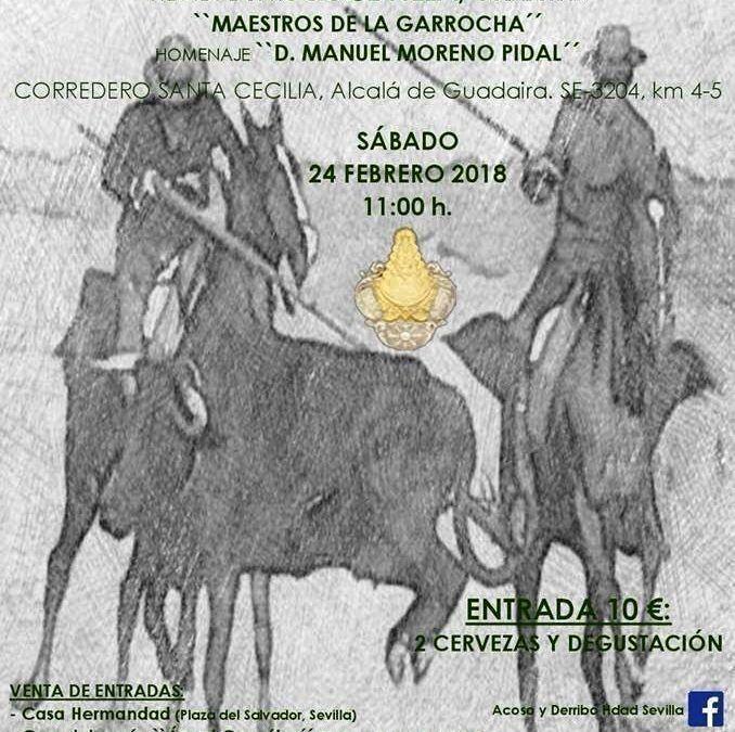I Concurso benéfico Acoso y Derribo HDAD. Del Rocio Sevilla