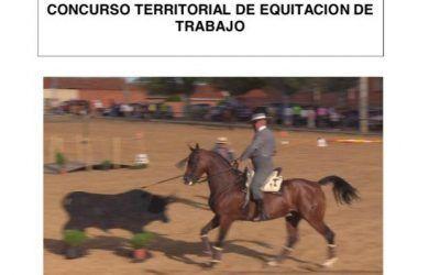 Concurso territorial Equitación de trabajo en Soto Ocio Valladolid