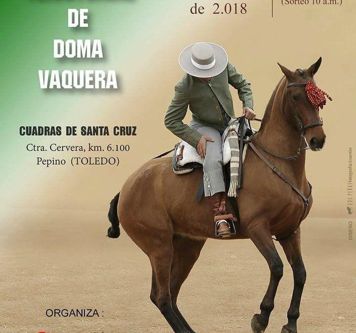 IV CTDV Toledo 7/4/18