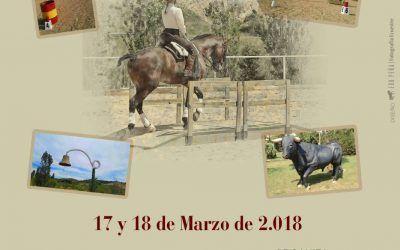 1 CNET 17 Y 18 DE MARZO 2018 Talavera de la Reina
