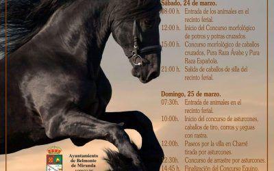XV Feria del Caballo en Belmonte de Miranda