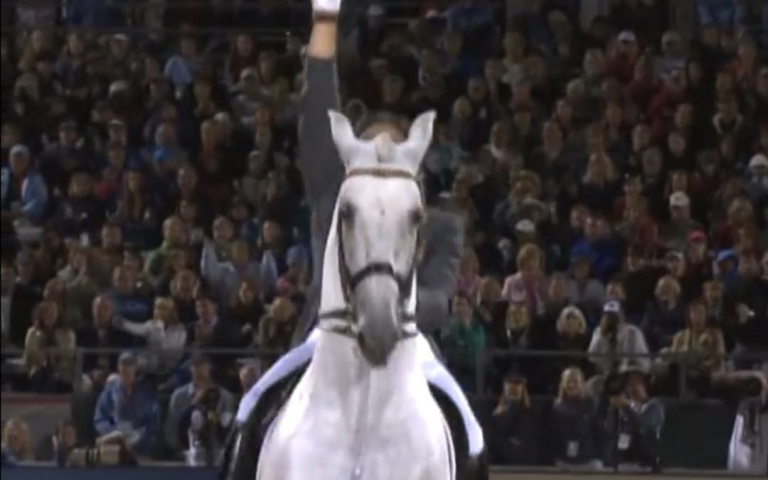 FUEGO XII Kur Grand Prix Freestyle WEG Kentucky 2010