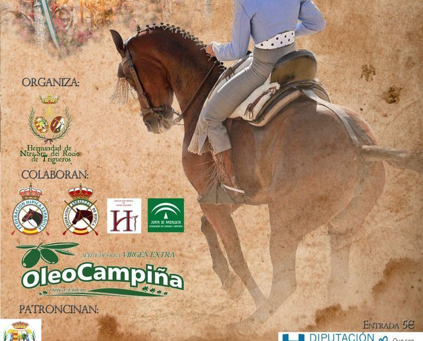 I CVNB Ciudad de Trigueros