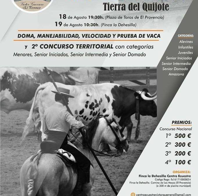 Concurso N. E. de Trabajo Tierra del Quijote