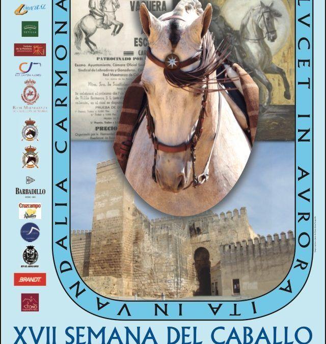 XLII Concurso Nacional Doma Vaquera Carmona