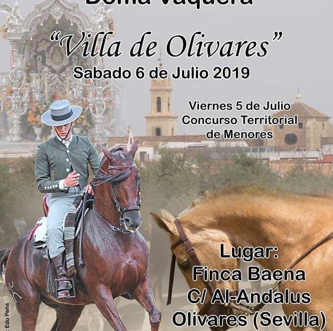 I CVNB Villa de Olivares